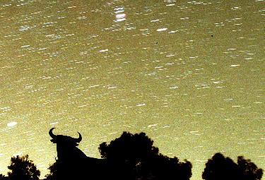 Stelle cadenti fotografate in Spagna (Foto Ansa)