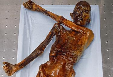 La mummia Oetzi (Foto: Ansa)