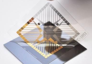 Elettrodi d'oro depositati su substrato polimerico (cortesia  L. Ravagnan)