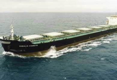 La nave sequestrata, la Rosalia D'Amato, foto Ansa