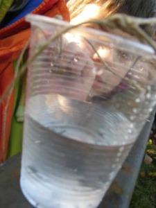 Scienz scuola incontrare l acqua alla scuola primaria 1 for Naviglio significato