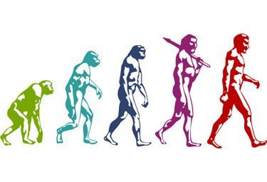 evoluzione_R375.jpg