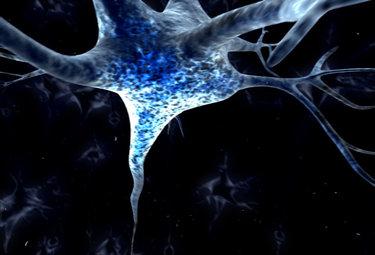 PROTAGONISTI/ Rizzolatti: i neuroni ci insegnano che abbiamo bisogno degli altri per esprimere noi stessi