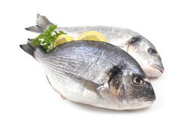 pesci_R375.jpg