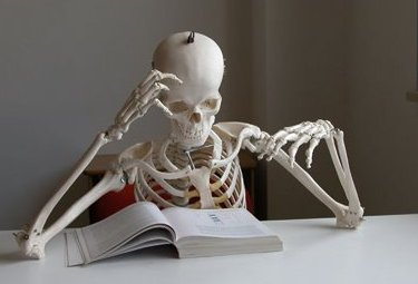 scheletroR375_04nov09.jpg