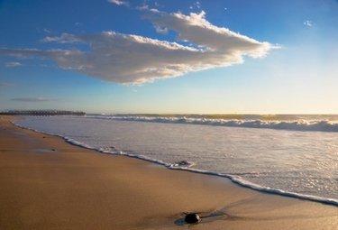 spiaggiaR375_12set08.jpg