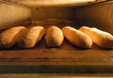 LA STORIA/ L'imprenditore milanese che ha portato il pane tra i terremotati di Haiti