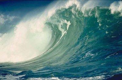 tsunami_R400.jpg