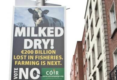 Un manifesto per il referendum in Irlanda