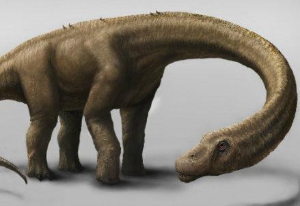 La ricostruzione del Dreadnaughtus