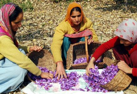 Infophoto - Donne del Kashmir