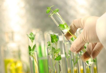 La green chemistry