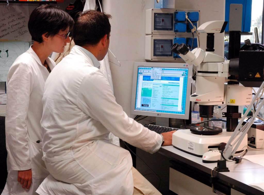 Alcuni ricercatori (Foto: Infophoto)