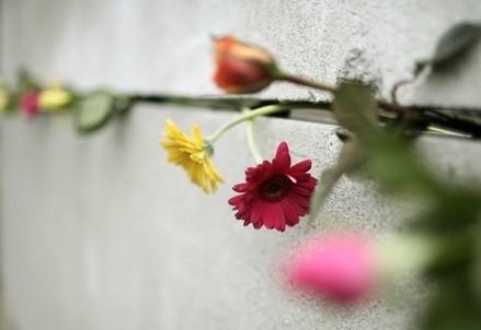Fiori nel Muro di Berlino (Infophoto)