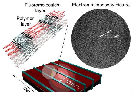 Schema di una nanostruttura polimerica auto-assemblata con allineamento millimetrico; l'immagine è ripresa al microscopio elettronico