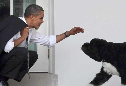 Obama con Bo, il cane della Casa Bianca (Infophoto)