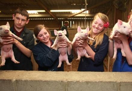 Studenti in fattoria - Foto Frank Baron