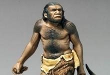 Neanderthal_FN1.jpg
