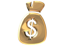 sacco_soldi_FN1.jpg