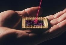 microchip_FN1.jpg