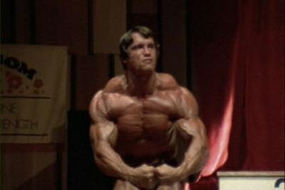 Schwarzenegger_palestratoR400.jpg