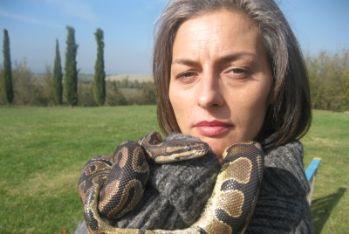 la_bellezza_del_somaro_vitaleR400.jpg