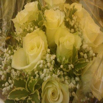 Rose bianche - Elisabetta Fantini