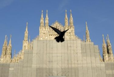 Milano_duomo_piccioneR375_13ott08.jpg
