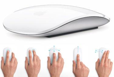 Mouse_R375_22_10_2009.jpg