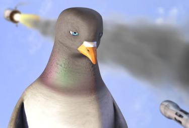 Pigeon_ImpossibleR375.jpg