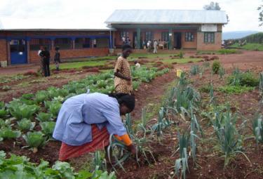Rwanda_CentroAVSIR375.jpg
