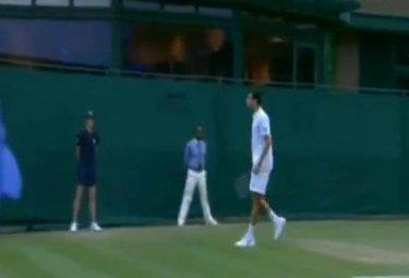 Wimbledon_Hanescu_R375.JPG