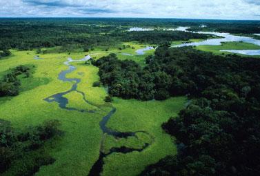 AMAZZONIA/ L'Ecologia dello sviluppo nel rispetto della vita
