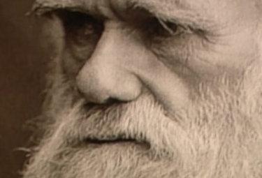 DIBATTITO/ Piattelli-Palmarini: la teoria di Darwin? È morta e sepolta