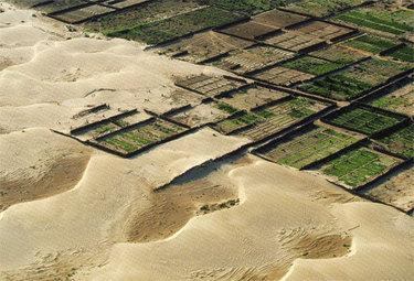 desertificazioneR375_20nov08.jpg