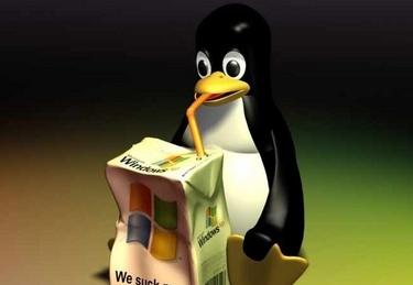 linux_pinguinoR375_24set08.jpg