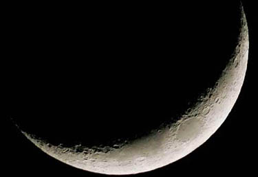 luna_R375.jpg
