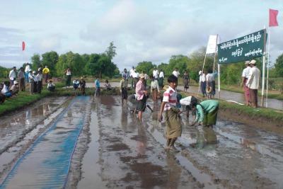 Birmania_Avsi_risoR400.jpg
