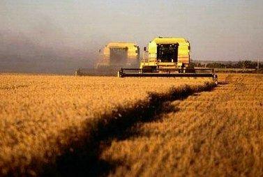 agricoltura_R375.jpg