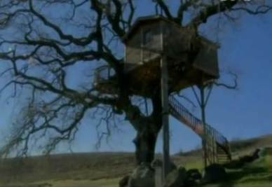 La casa sull'albero di  La Piantata (VT)