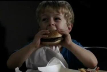 hamburgereroinaR375,jpg.jpg
