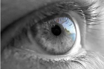 L'occhio raccoglie ogni istante 100 milioni di segnali