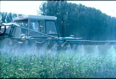 pesticidi-r375.jpg