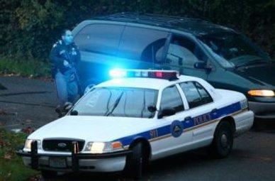 poliziaamericana_R375.jpg