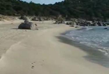 spiaggiaR375.jpg