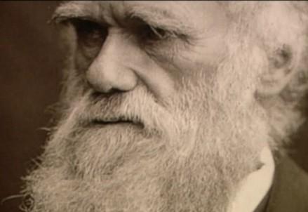 Charles Darwin (1809-1882) (Immagine d'archivio)