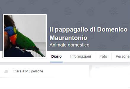 La pagina Facebook