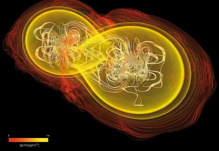 Fusione di due stelle di neutroni magnetizzate