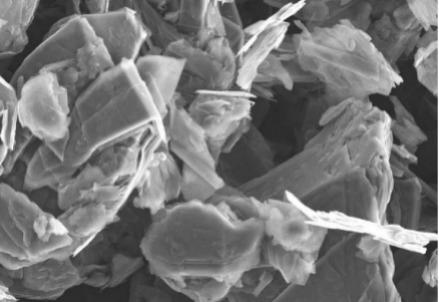 Una scansione al microscopio elettronico della polvere di grafite dopo il trattamento con l'acqua distillata