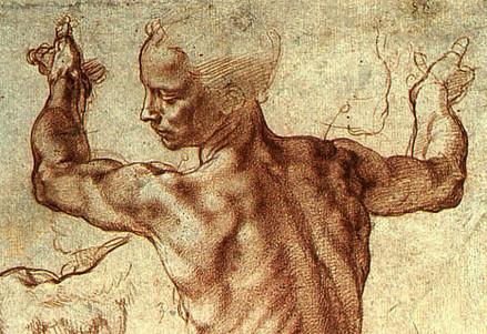 Michelangelo, Studio per la Sibilla (Immagine dal web)